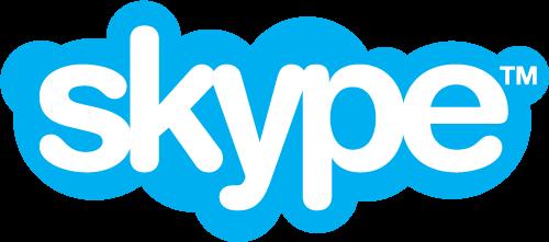 Skype, inwestor zastępczy, budowa własnego, kierowanie budową online